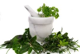 kozmetikte kullanilan bitkiler